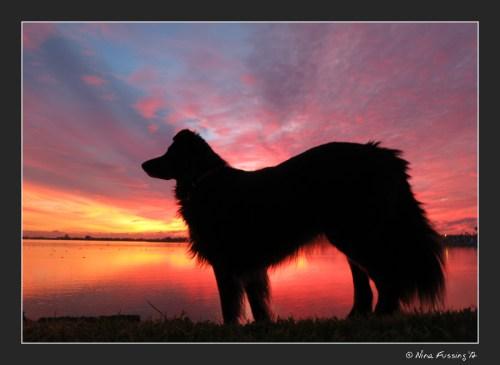 C-20121225 Sunset (37) (JPG)