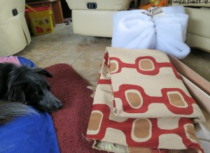 Fabric and backing material (dog is optional)
