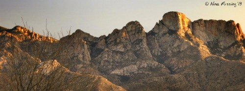 The lovely Catalina Mountain Range, as seem from camp