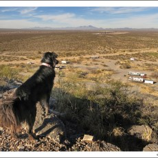 Boondocking Site Review – Snyder Hill BLM, Tucson, AZ