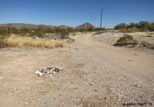 Another open site view. This is towards northern end of BLM area.