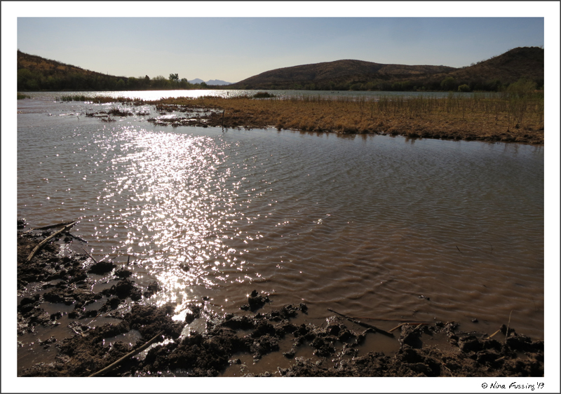 Sp Campground Review Patagonia Lake State Park