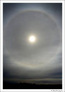 """A rare """"fire rainbow"""" on a cloudy day"""