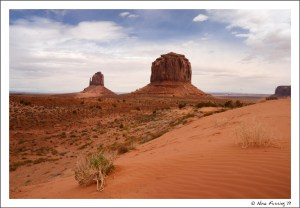 Inside the Navajo park