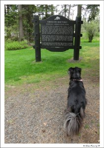 Polly checks out a historic display at Emigrant Springs