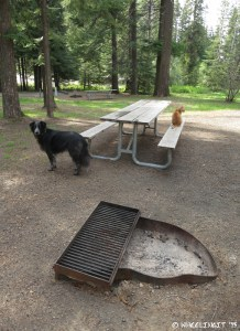 "View of ""sitting"" area showing fire-pit and picnic table. This was our site A4."