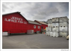 Jesse's at Ilwaco