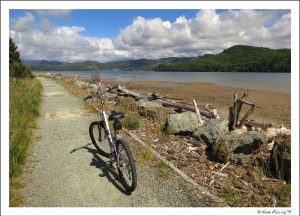 Bike-trail at Nehalem Bay State Park
