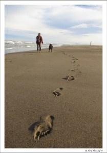 A few footsteps