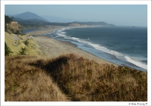 How d'ya like them apples? View from one of the many coastal trails at Cape Blanco