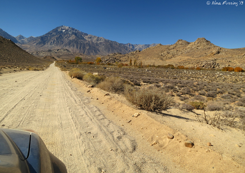 The dirt road leading into Buttermilk Country