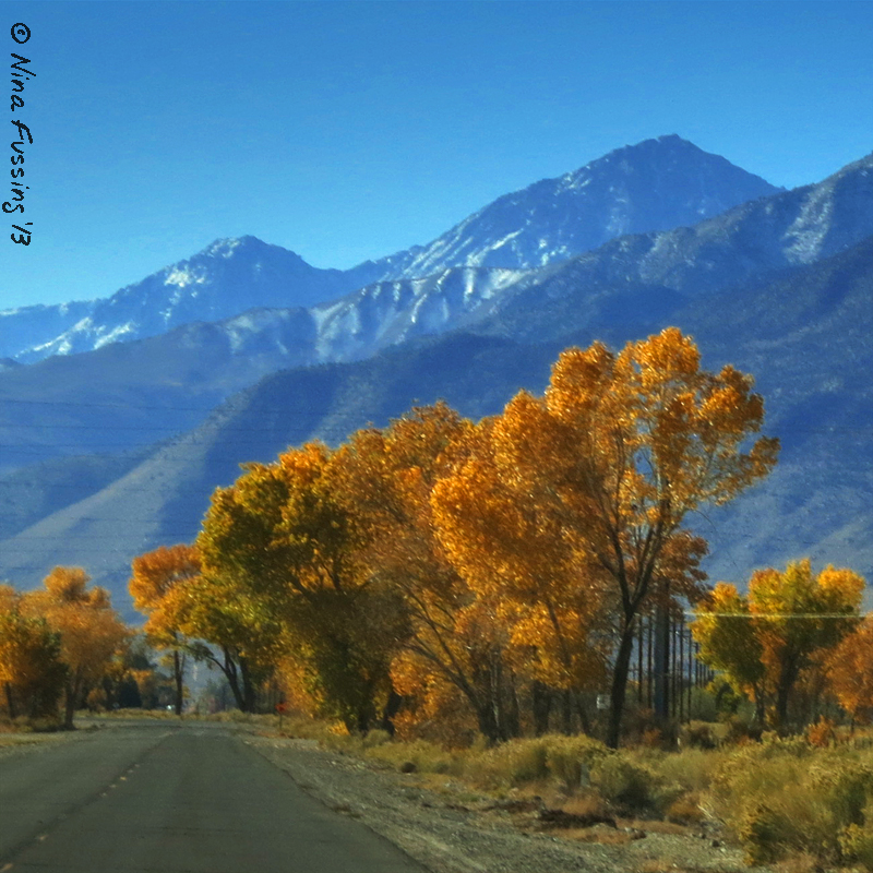 """Not a bad """"commute"""" into town. Still lots of fall color here."""