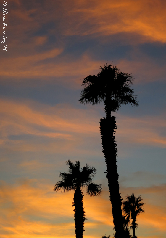 Ahhhh...desert sunsets!