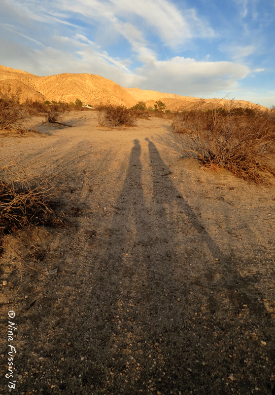 I just love those long afternoon shadows!