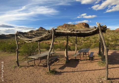 Cactus-roofed picnic area