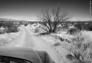Driving the dirt roads of Buenos Aires NWR