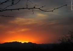 Deep orange lights the sky