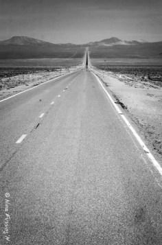 The Alien Highway