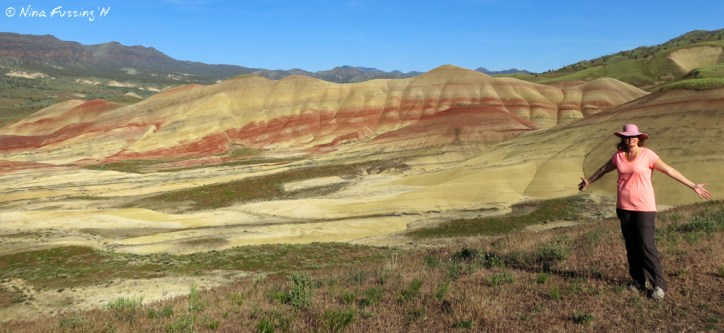 The amazing, stupendous Painted Hills