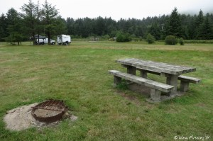 """View of one of """"sites"""" with picnic table and fire-pit in the dispersed camping area"""