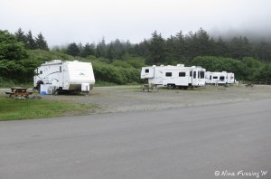 View of RV hookup area. This area has 10 sites.