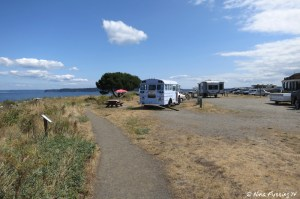 """View further back in RV park. RV on left is in """"prime"""" site #332"""