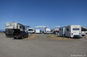 """View looking behind our RV to back sites. RV on left in site 301, on right 303 and they are both """"hidden"""" from the water view by the row of RV's in front (sites 307-311)"""