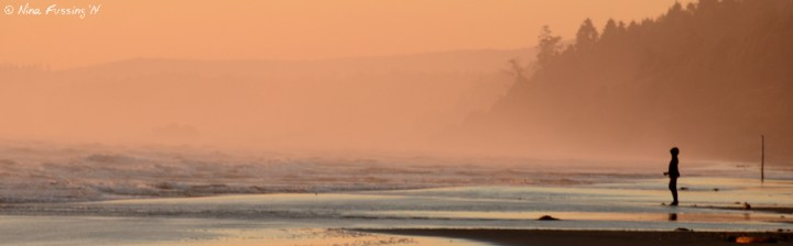 Misty views from Kalaloch