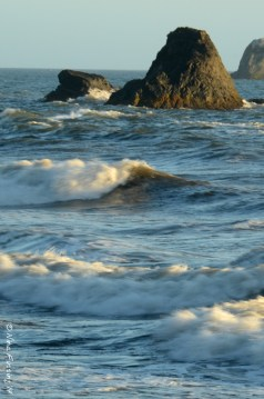 Waves crash the sea stacks at Ruby Beach