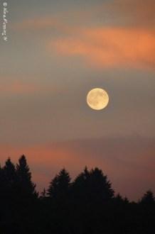 "The ""Thunder Moon"" rise"