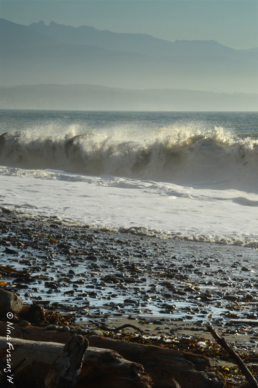 Wild waves near the spit