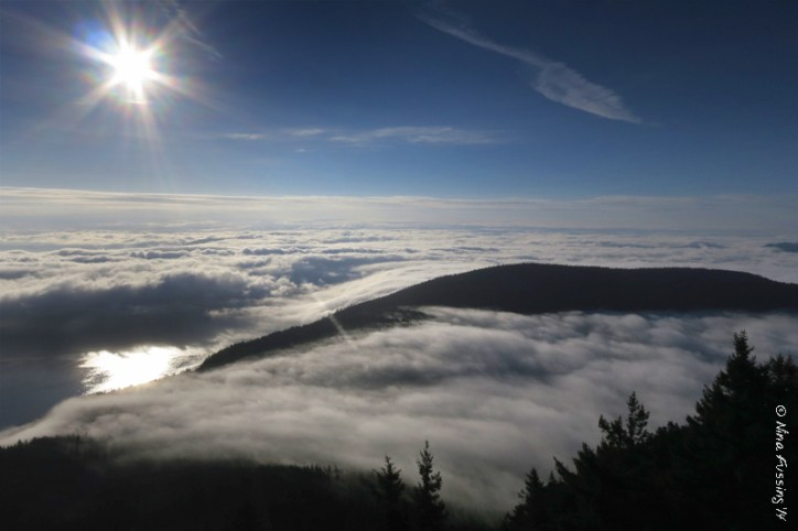 We're often above the clouds here at Mount Constitution. Yeah, it rocks...