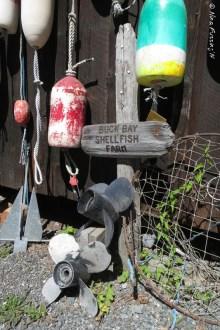 Buck Bay Shellfish is a hidden gem