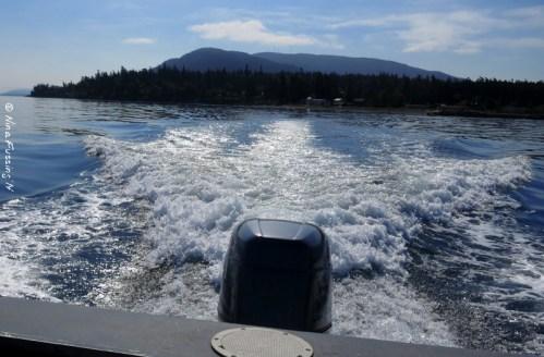 Leaving Orcas behind