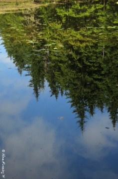 Crystal clear reflections at Summit Lake