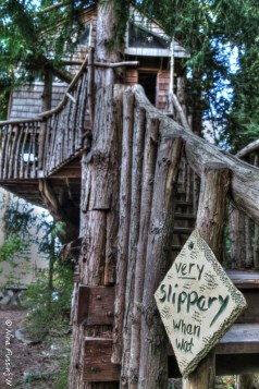 The cool tree-house at Orcas Pottery