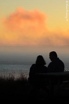 Couples therapy...ala Cape Blanco