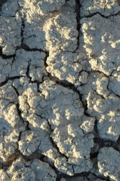 Salty deposits in the dry lake bed