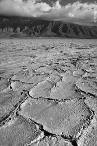 The cracked and parched earth of the dry lake bed