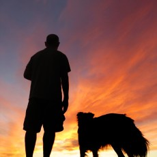 Hiding Out, Rocky Sunsets, & Mexico – Yuma, AZ