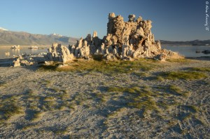 Magnificent Tufa's