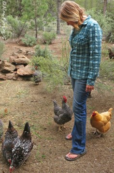 Nina the chicken-whisperer