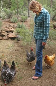 Nina the chicken-whisperer