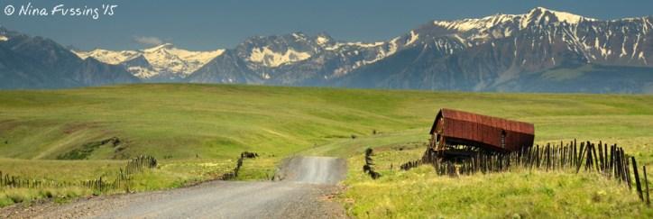 Little Barn on the Prairie -> the winding dirt road from the stunning Zumwalt Prairies
