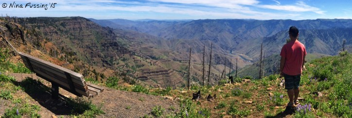 iPhone Panorama from the overlook