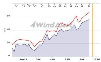 Cape D Wind Tracker