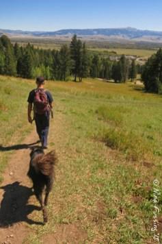Hiking w/ doggie above Teton Village