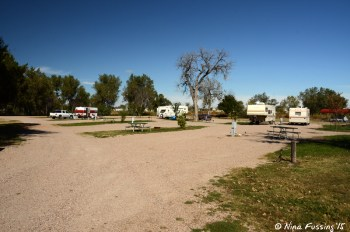 """View down one of back """"shared site"""" rows. Site #27/28 on right. When full RV's back side-to-side here (hookups in middle)."""