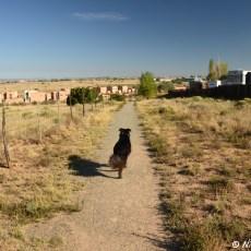 RV Park Review – Santa Fe Skies RV Park, Santa Fe, NM