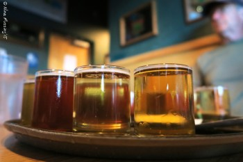 Beer flight at Turtle Mountain Brewing